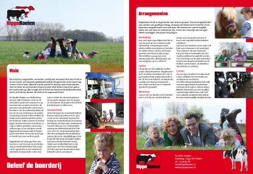 flyers_hippekoeien_big