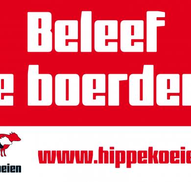 vb_afbeelding_banners_hippekoeien