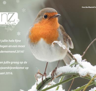 2015115Kerst_nieuwjaarskaart-1